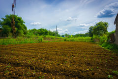 Farm field already fertilized and ready to cultivate with bushes around and beautiful sky as background photo taken in Stock Images