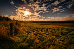 Farm Field Autumn Morning Stock Photography