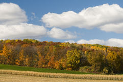 Farm Field Scenic Stock Photography