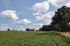 Farm field and barn with large expanse of sky Royalty Free Stock Image