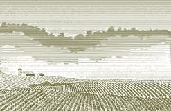 Farm Field Drawing Stock Photography