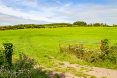Farm field in Greenway route from Castlebar to Westport. Ireland stock photography
