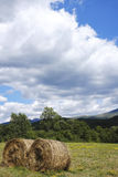 Farm Field with Hay Bale Royalty Free Stock Image