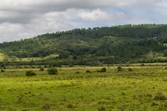 Farm field and hill Royalty Free Stock Photography