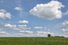 Farm field with large expanse of sky Stock Photography