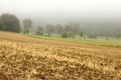 Farm Field in Mist. Looking across a farm field that has been harvested with only stubble and mulch remaining royalty free stock image