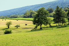 Farm Field and Mountain Ridge Royalty Free Stock Photography