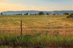 Farm field in rural Utah Royalty Free Stock Images