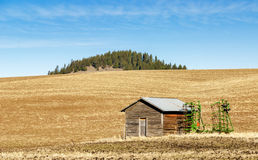 Farm field with shed and equipment Stock Photography