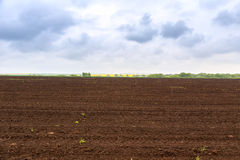 Farm field in spring. In Hungary Royalty Free Stock Image