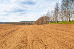 Farm field in the spring time Royalty Free Stock Images