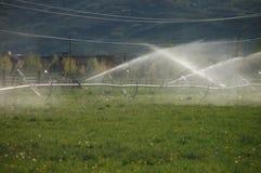 Farm field sprinkling system. Farm field sprinkling irrigation system for grazzing animals royalty free stock image