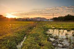 Farm field sunrise Royalty Free Stock Photo