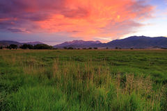 Farm field sunset  image in rural Utah, USA. Royalty Free Stock Images