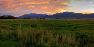 Farm field sunset in rural Utah, USA. Stock Images