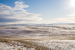 Farm field under snow. A beautiful sunny landscape of a large farm field covered with snow under a blue sky Royalty Free Stock Photography