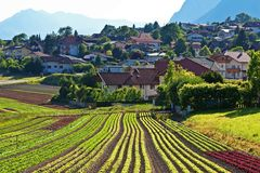 Farm field and a village in Austria Royalty Free Stock Photography