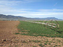 Farm Fields Royalty Free Stock Image