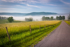 Farm fields along a country road on a foggy morning in the Potom Royalty Free Stock Image