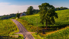 Farm fields along a country road in rural York County, Pennsylva Stock Images