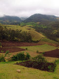 Farm fields in Otavalo Stock Images