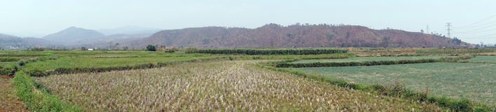 Farm fields. Panorama of farm fields in Myanmar stock photos