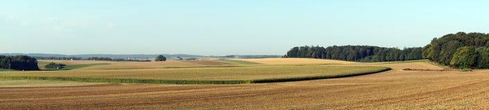 Farm fields stock images