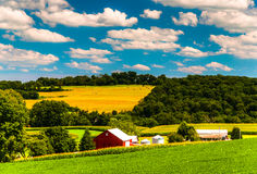 Farm fields and rolling hills in rural York County, Pennsylvania Stock Photo