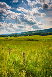 Farm fields in the rural Potomac Highlands of West Virginia. Stock Photos