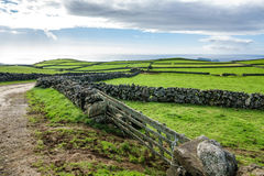 Farm fields in the Terceira island in Azores with road Stock Photo
