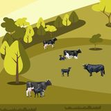 Farm flat landscape with cows. Vector illustration Royalty Free Stock Photo