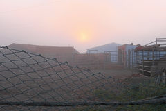 Farm in the fog in Portugal at sunset. Farm in the fog in Portugal Europe at sunset Royalty Free Stock Images