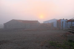 Farm in the fog in Portugal at sunset. Farm in the fog in Portugal Europe at sunset Stock Photos