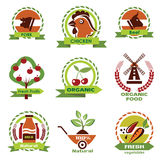 Farm food, agriculture icons Stock Images