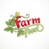 Farm food lettering with tomato sprout with flower Stock Image