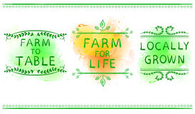 Free FARM FOR LIFE, FARM TO TABLE, LOCALLY GROWN. Hand Drawn Typographic Element On Green Paint Splash Background. Green Royalty Free Stock Photos - 94246478