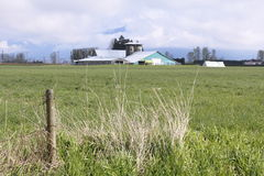 Farm in the Fraser Valley Stock Photos