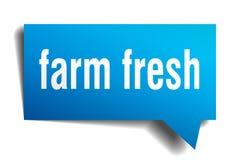 Farm fresh blue 3d speech bubble. Farm fresh blue 3d square isolated speech bubble Royalty Free Stock Photography