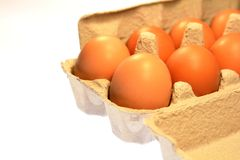 Farm Fresh Brown Eggs Carton Royalty Free Stock Photography