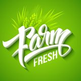 Farm Fresh, calligraphic inscription. Vector Stock Photo