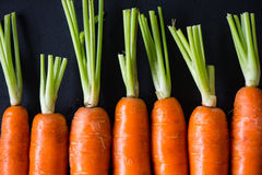 Farm fresh carrots on black background Royalty Free Stock Photography