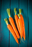 Farm fresh carrots on blue table Royalty Free Stock Photography