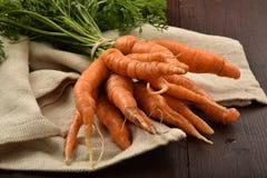 Farm fresh carrots Stock Photography