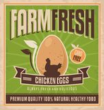 Farm fresh chicken eggs vector illustration