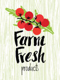 Farm fresh design card Stock Image