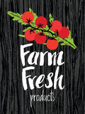 Farm fresh design card with tomatoes Stock Photography