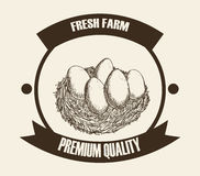 Farm fresh design Royalty Free Stock Images