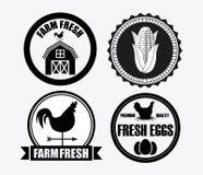Farm fresh Stock Photography
