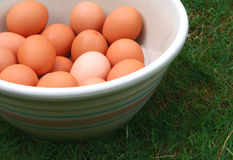 Farm Fresh Eggs. Brown eggs in antique bowl on grass stock images