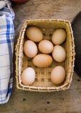 Farm Fresh Eggs Royalty Free Stock Photos